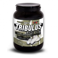 Тестобустер Vision Nutrition Tribulus Large Caps 300 капсул
